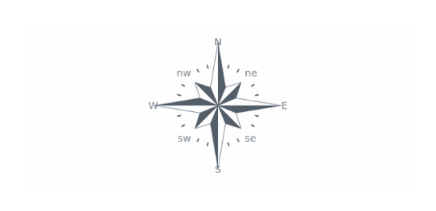 Compass Gauge created by AnyChart Team, This Circular Gauge is very unusual: it is a simulation of compass. Each needle of the chart was colored half into dark grey and half in white. Two axes represent two rosewinds.