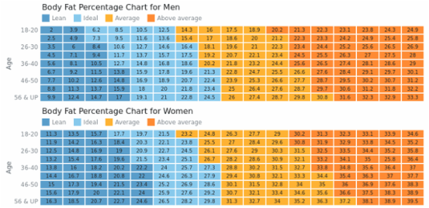 Body Fat Charts created by AnyChart Team, This dashboard contains two heat maps showing body fat percentage of men amd wemen with four ranges each of different body types, from lean to above average, using one color scale with four ranges and a legend for heat map.