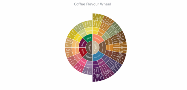 Coffee Flavour Wheel created by anonymous, Sunburst Chart: coffee aroma and taste